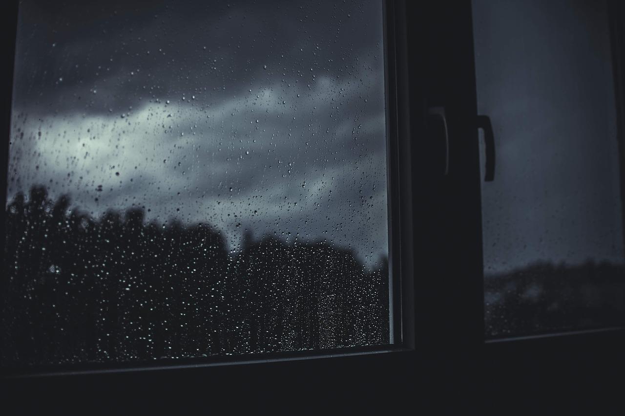 Da li su prozori sa ugrađenim roletnama dobar izbor?